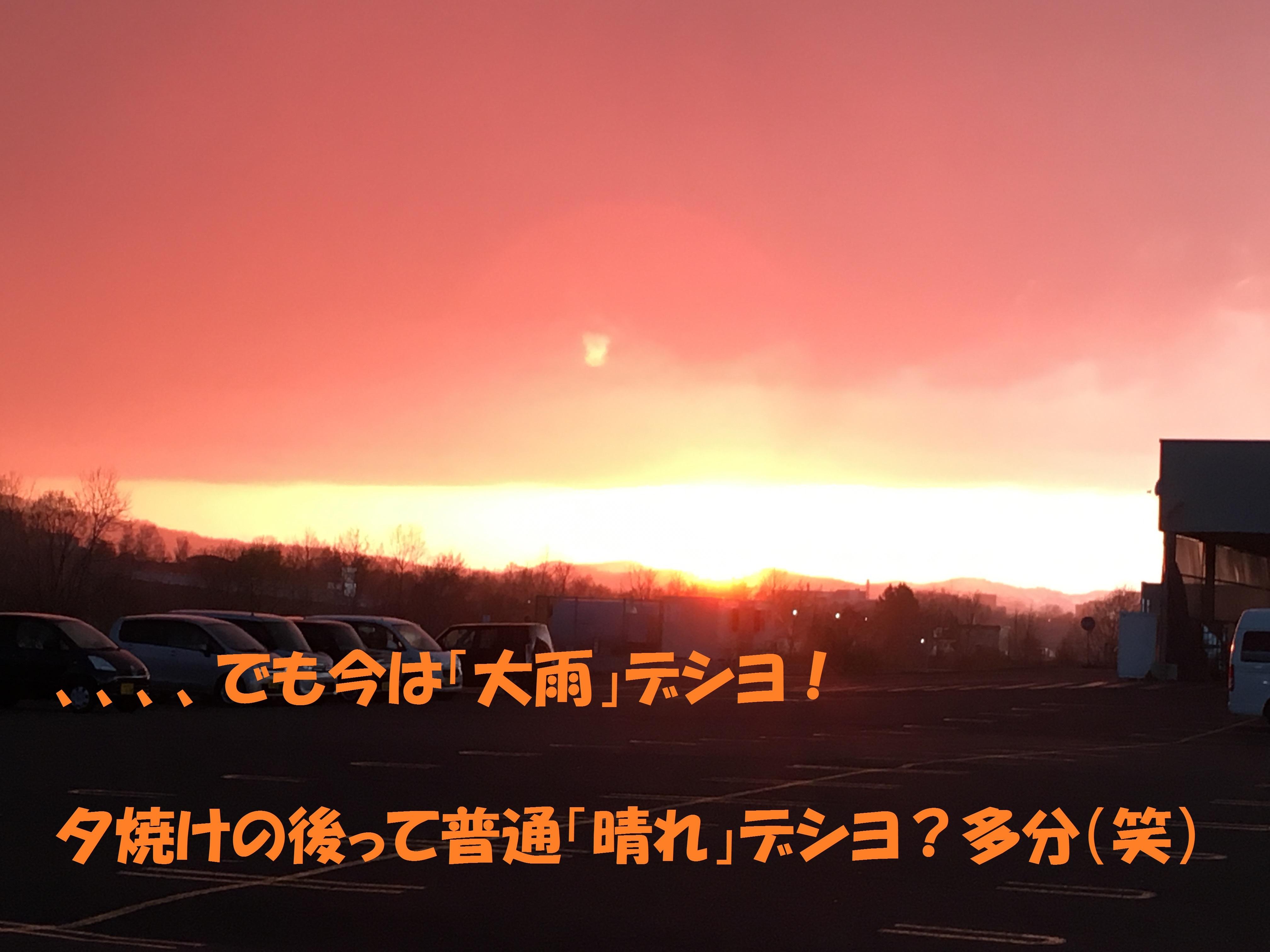 IMG_2973.jpg