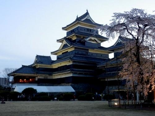松本城夜桜 (46)