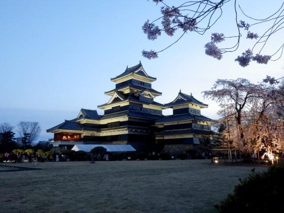 松本城夜桜 (52)