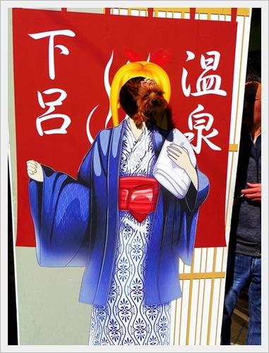 下呂温泉IMGP5829-20170311