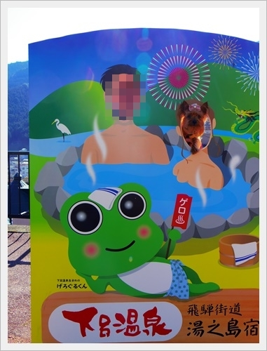 下呂温泉IMGP5831-20170311