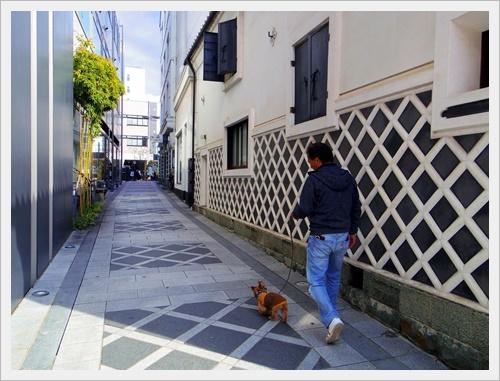 松本城IMGP5929-20170325