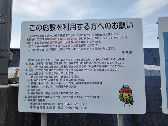 飯岡漁港 釣り 2017