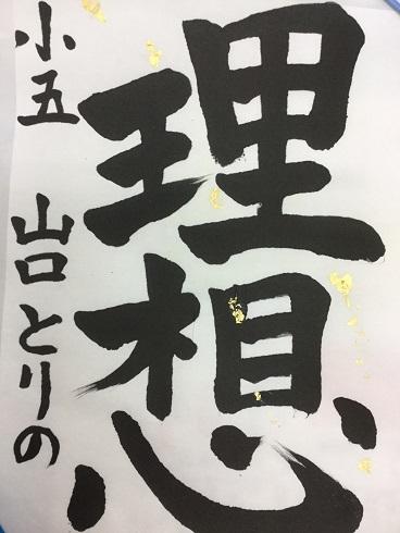 IMG_9038_9C.jpg
