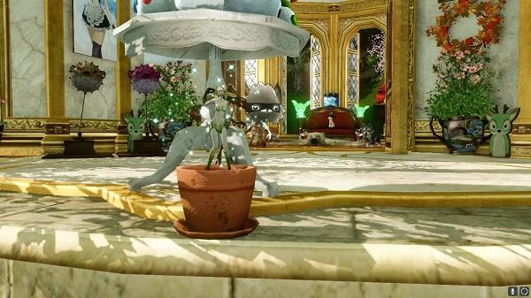 2月27日イベントの鉢の妖精