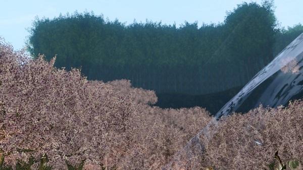 4月23日お花見イベント2