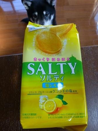 ソルティ塩レモン1