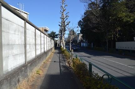 2017-01-21_99.jpg