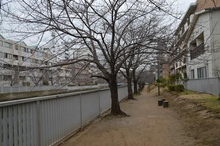 2017-02-18_69.jpg