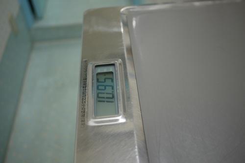 P1560403.jpg