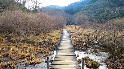 IMG_3725湿地帯