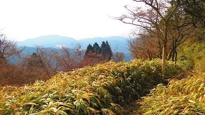 IMG_3744笹路