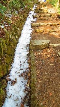 IMG_3755雪