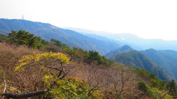 IMG_3756西おたふく山