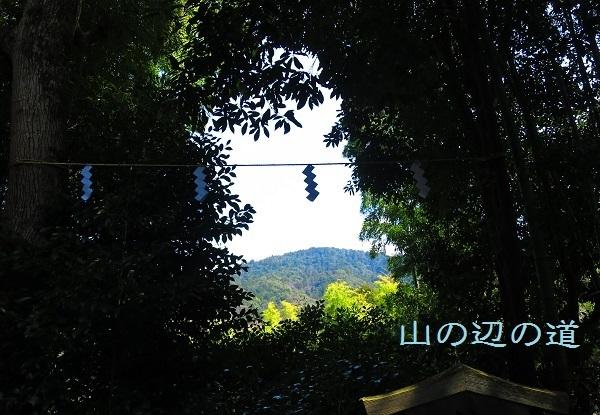 IMG_3808三輪山