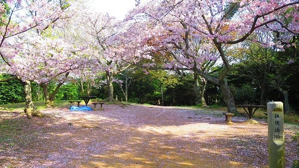 IMG_3939鉢伏山