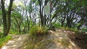IMG_4022高尾山分岐