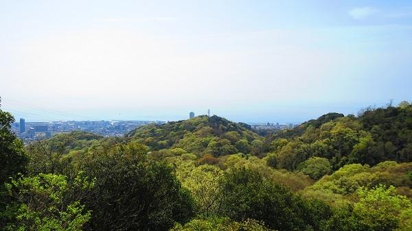 IMG_4025高尾山