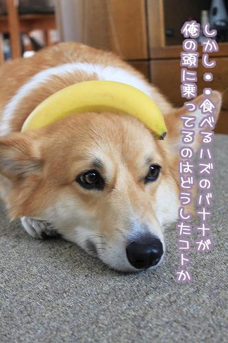 バナナが乗ってるのは