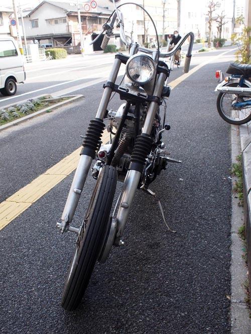 P2252898.jpg
