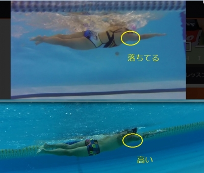 swimform03_201703311554357e2.jpg