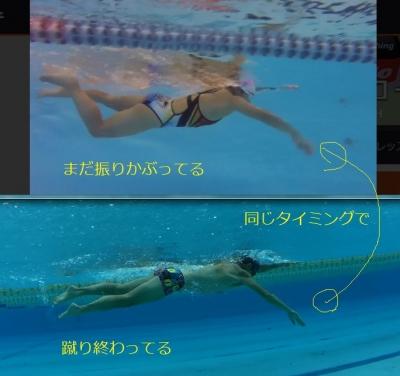 swimform04_20170331155437040.jpg