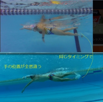 swimform05_20170331155438d73.jpg
