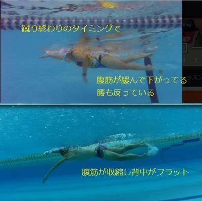 swimform06_20170331155440b7c.jpg