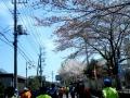 霞ヶ浦マラソン12