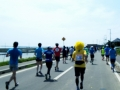 霞ヶ浦マラソン20