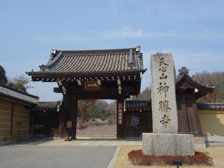 禅と庭のミュージアム (2)