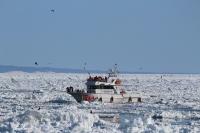 流氷観光船