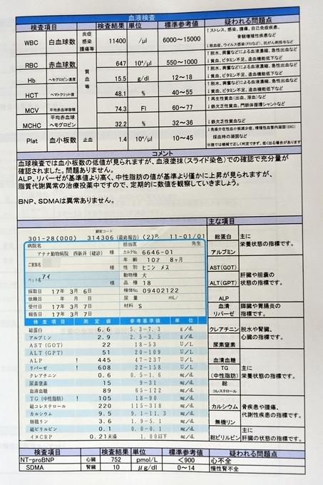 blogDSC_1042.jpg