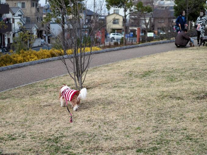 blogP3050048.jpg