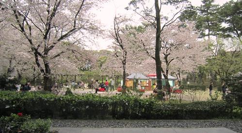 県美から見た縮景園