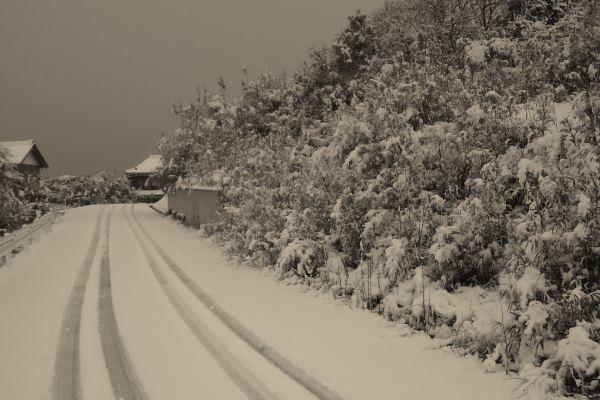 20170214_snow.jpg