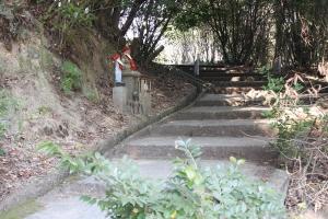 観音寺の境内から展望台へ2