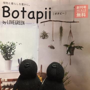 20170218-多肉植物 (7)