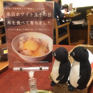 20170319-お食事 (9)