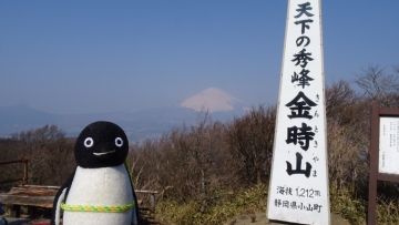 20170319-山登り (9)