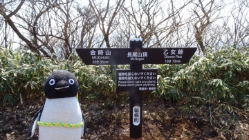 20170319-山登り (14)