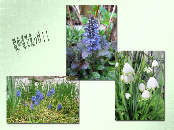 春、真っ只中ー1
