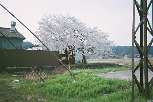 1627_yoita.jpg