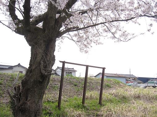 1630_yoita.jpg