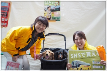 H29031909東京タワー台湾祭