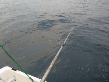 (3)海面はちょっとざわついてます