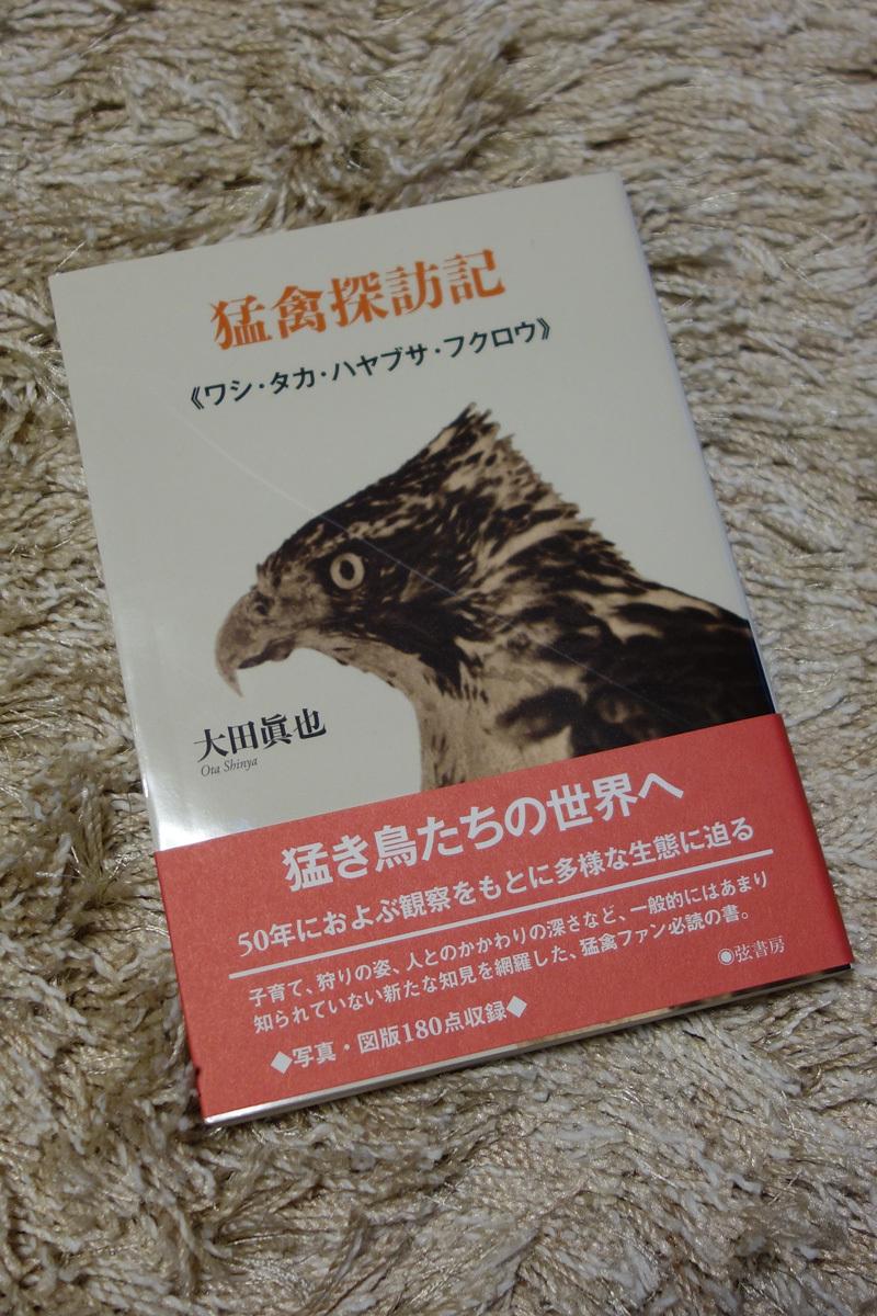 mokin-DSC04510.jpg