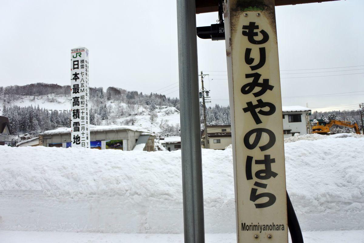 soraumi4685.jpg