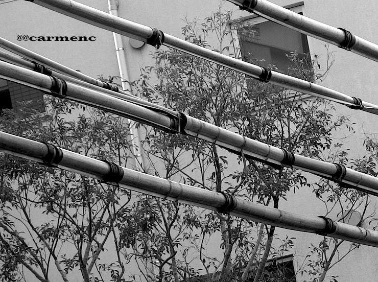 竹のフェンス