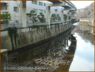 20170308  江戸川橋  1   春が近づく